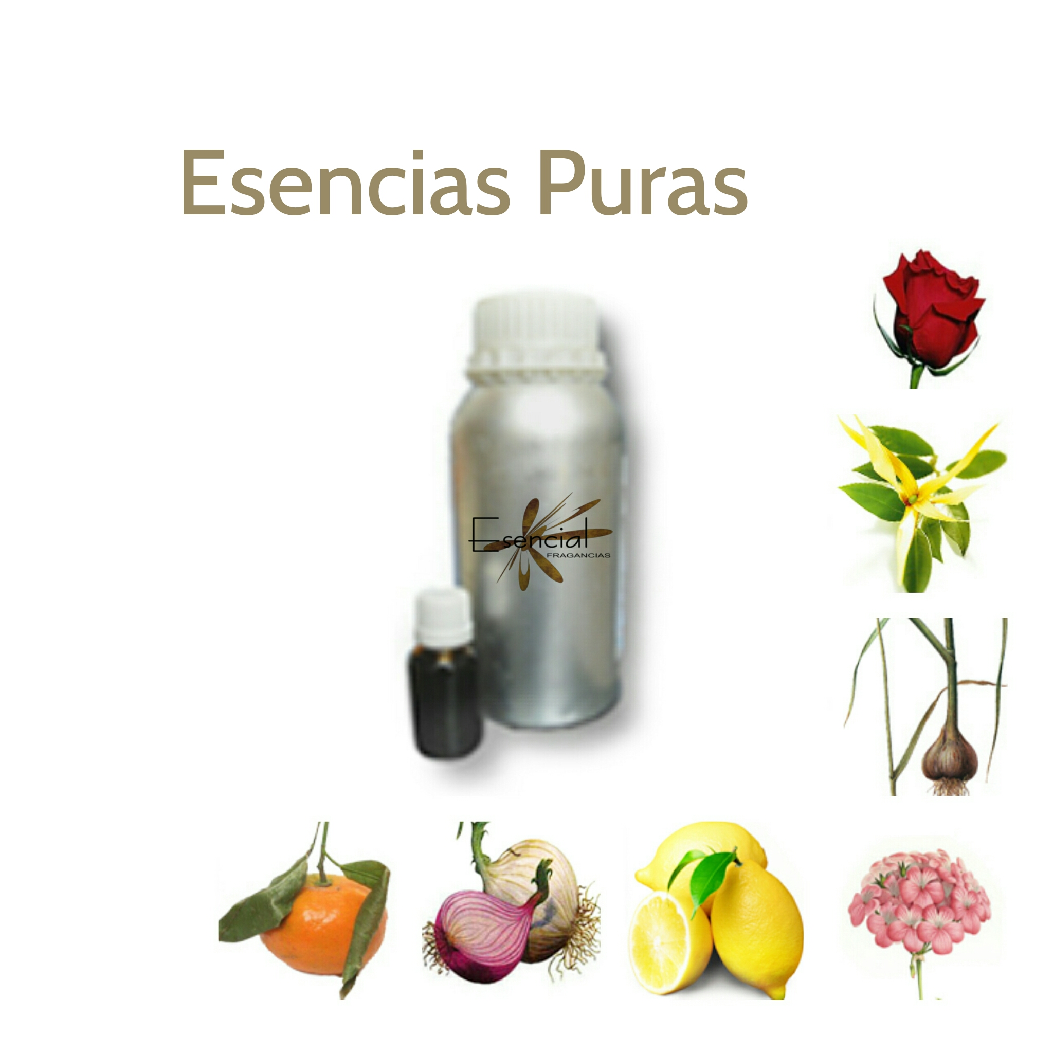 PURE ESSENCES 100% BY DISTILLATION