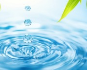 Essències hidrosolubles